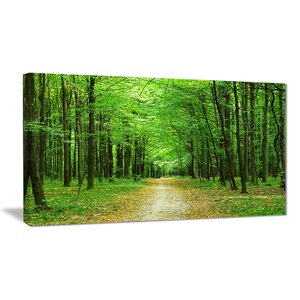 'Pathway in Green Forest' Photographic Print on Wrapped Canvas by Design Art