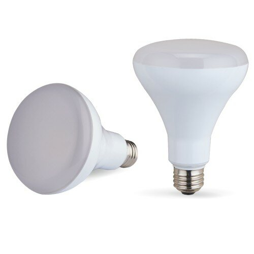 E26/Medium LED Light Bulb by TW Lighting