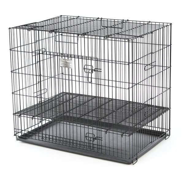 Beryl Puppy Playpen Plastic Pan Yard Kennel by Tucker Murphy Pet