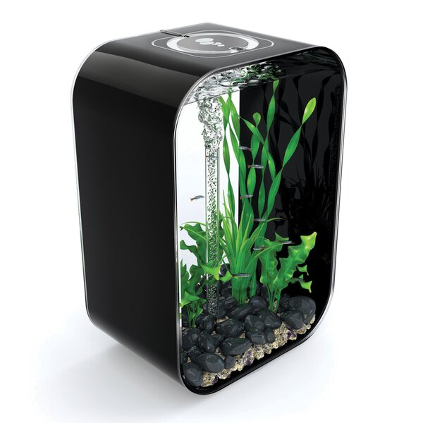 4 Gallon Life Aquarium Tank by biOrb