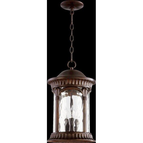 Witte 3-Light Outdoor Hanging Lantern by Fleur De Lis Living
