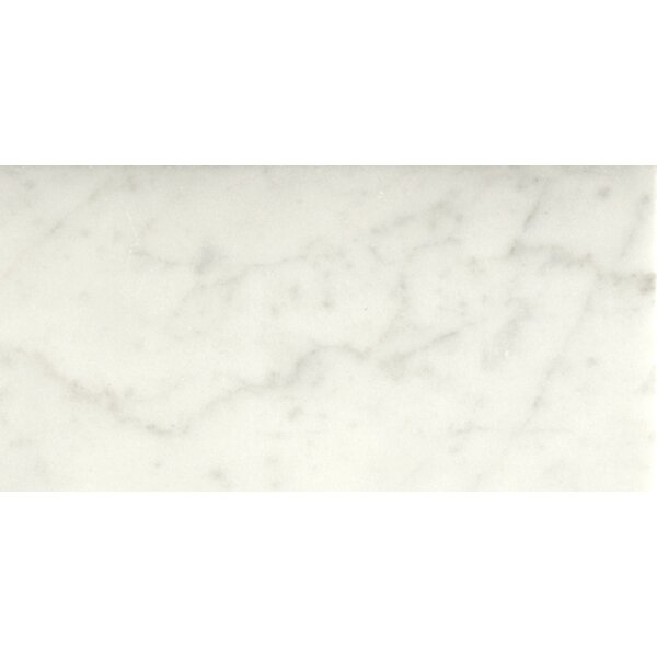 Marble 4 x 8 Tile in Bianco Gioia Honed by Emser Tile
