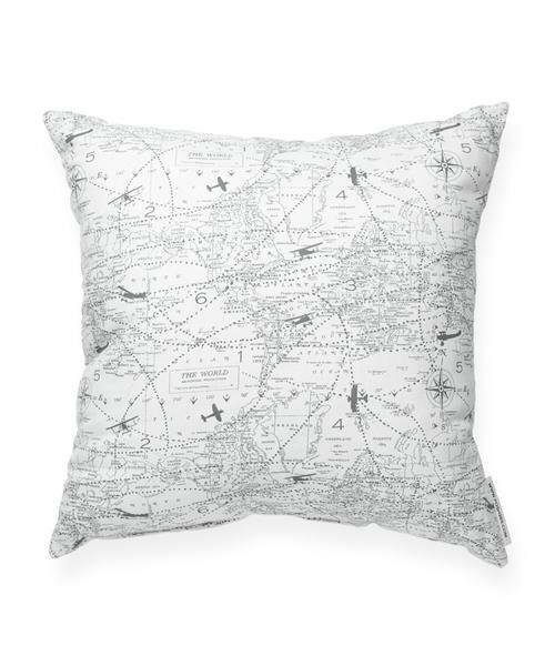 Vivan Airplane Aviation Cotton Throw Pillow by Ivy Bronx