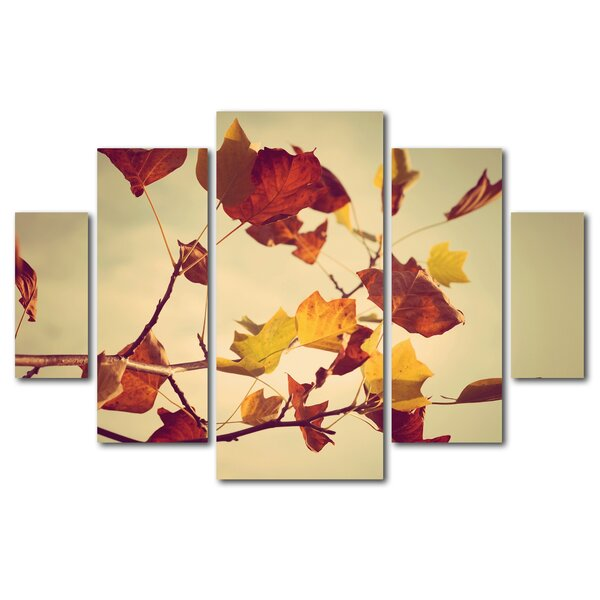 Still Fall by Philippe Sainte-Laudy 5 Piece Photographic Print on Wrapped Canvas Set by Trademark Fine Art