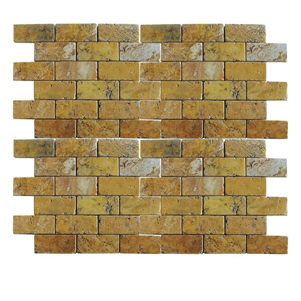 Tumbled 1 x 2 Natural Stone Mosaic Tile in Gold by QDI Surfaces