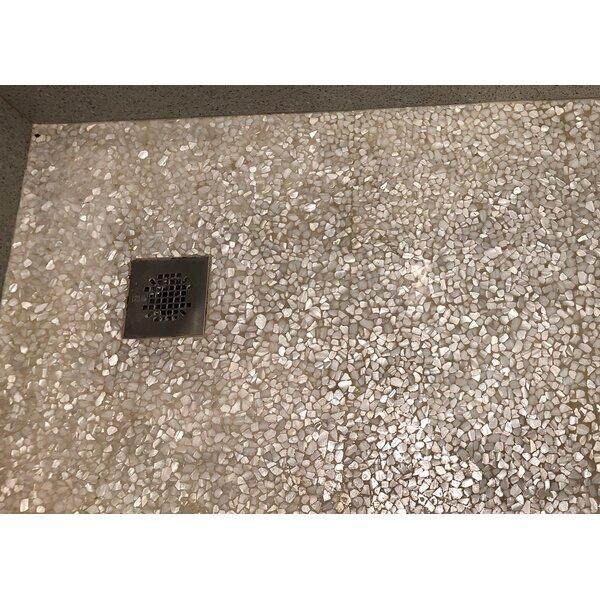Mesh Mounted Random Sized Authentic Polished Seashell Mosaic Tile in White