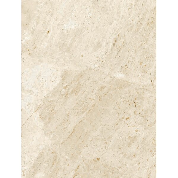 Peyton 10 W x 13  Ceramic Field Tile in Off-White by Parvatile