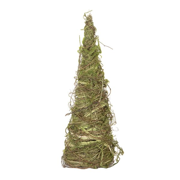 Woven Cone Desktop Moss Tree by August Grove