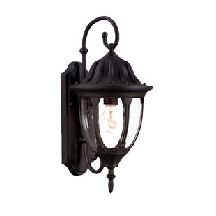 Best Price Pritchard 1-Light Outdoor Wall Lantern By Charlton Home