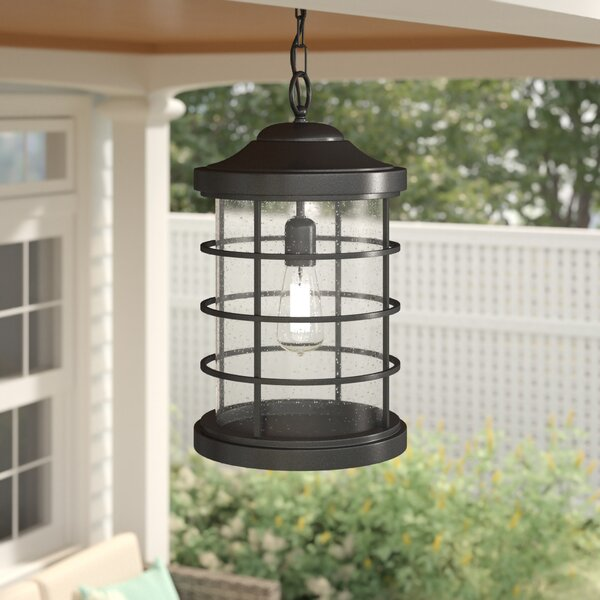 Alanson 1-Light Outdoor Hanging Lantern by Birch Lane™ Heritage