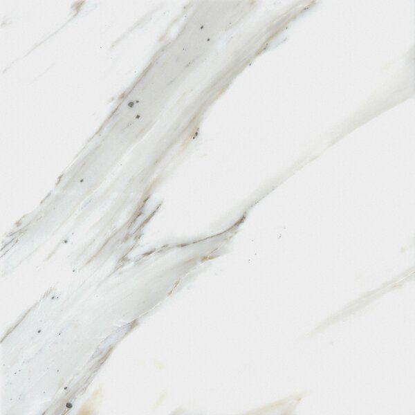 Calacatta 12 x 12 Natural Stone Field Tile in White by MSI