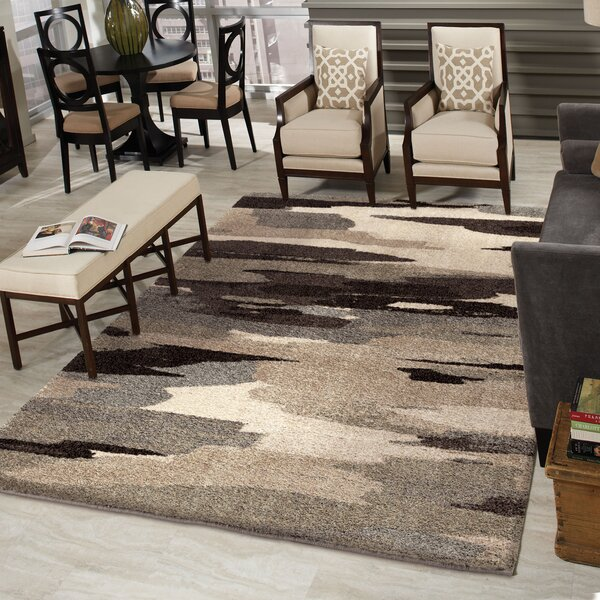 Cyna Black/Gray Area Rug by The Conestoga Trading Co.