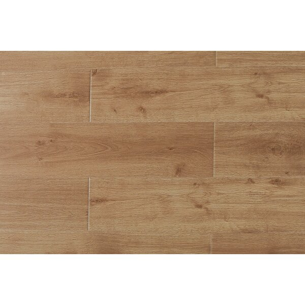 Arletta  9 x 49 x 12mm Oak Laminate Flooring in Virginia by Serradon