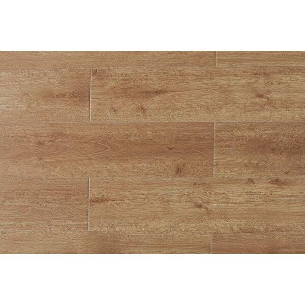 Arletta  9 x 49 x 12mm Oak Laminate Flooring in Virginia by Serradon