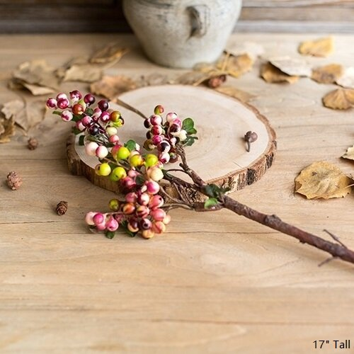 Rustic Artificial Berry Stem by August Grove