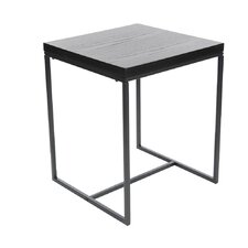 Gomes Metal Wood End Table by Varick Gallery