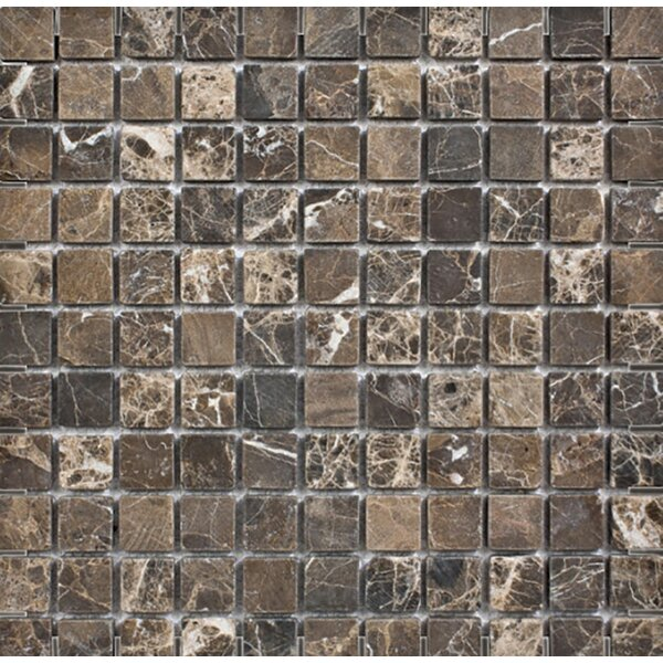 Emperador Tumbled 1 x 1 Stone Mosaic Tile in Dark by Parvatile