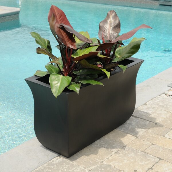 Valencia Plastic Pot Planter by Mayne Inc.