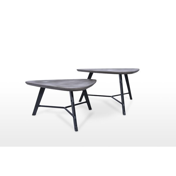 Meaghan 2 Piece Coffee Table Set by 17 Stories