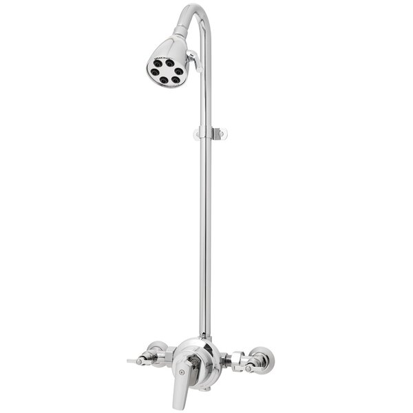 Icon 6-Jet 2.5 GPM Wall Mount Oudoor Shower by Speakman