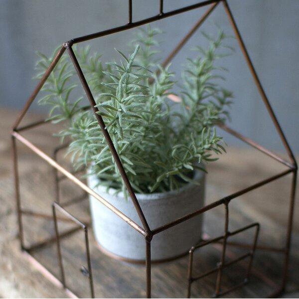 Pelfrey House Pot Planter by Bungalow Rose