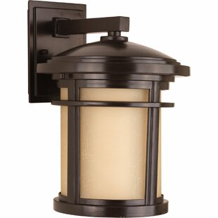 Coupon Chamberlain Traditional 1-Light Wall Lantern By Bloomsbury Market