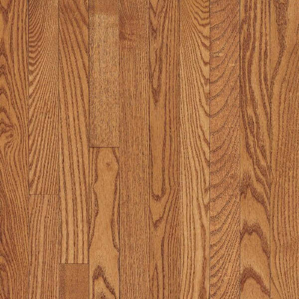 Dundee 3-1/4 Solid Red Oak Hardwood Flooring in Butterscotch by Bruce Flooring