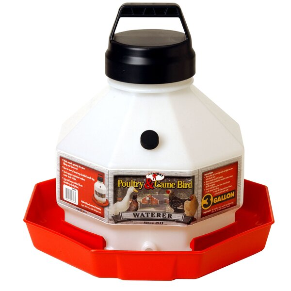 Little Giant Farm & Ag Poultry Fountain by Miller