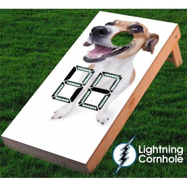Electronic Scoring Jack Russell Cornhole Board by Lightning Cornhole