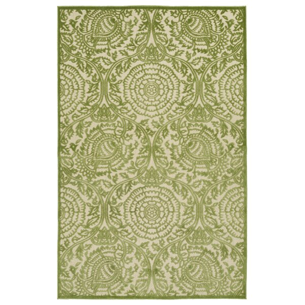 Covedale Hand-Woven Green Indoor/Outdoor Area Rug by Charlton Home