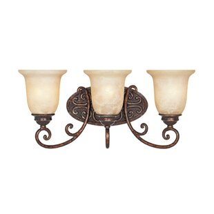 Affordable Claverack 3-Light Vanity Light By Fleur De Lis Living