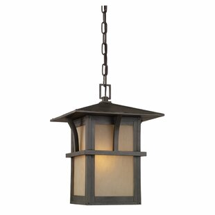 Great choice Bush Creek 1-Light Outdoor Hanging Lantern By Darby Home Co