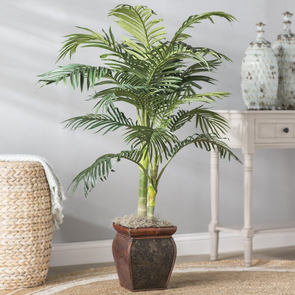 Palm in Decorative Vase by Beachcrest Home