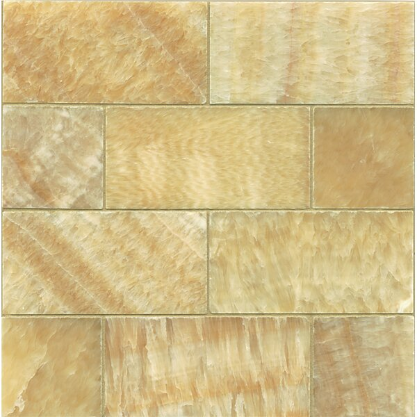 Onyx 3 x 6 Marble MosaicTile in Honed Sweet Honey by Bedrosians