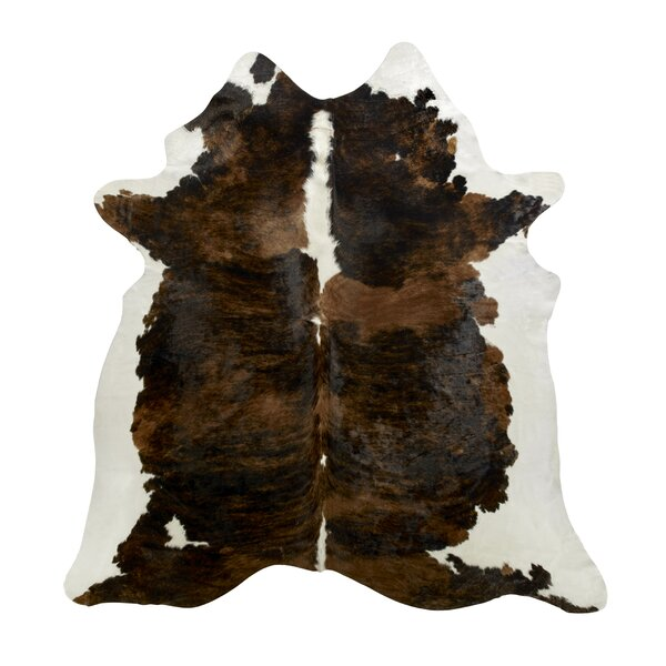 Dark Brown/Ivory Area Rug by Saddlemans