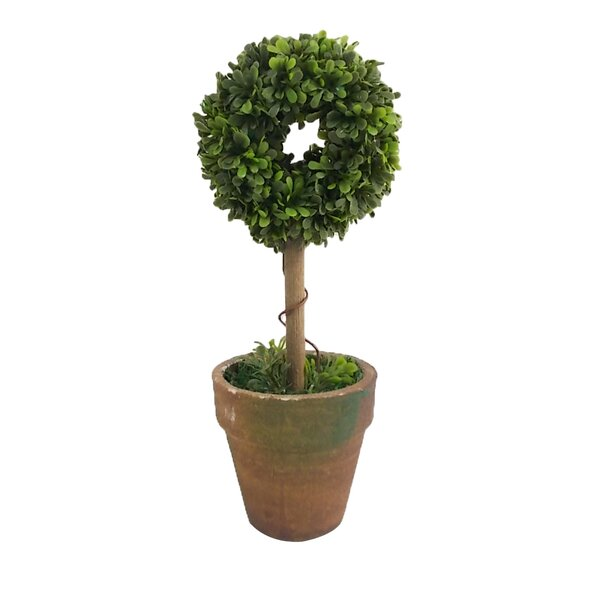 Floral Ring Topiary in Pot (Set of 2) by Craft Outlet