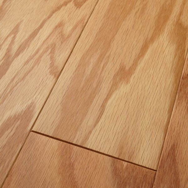 Americano 5 Engineered Oak Hardwood Flooring in Matte Glossy Natural by Welles Hardwood