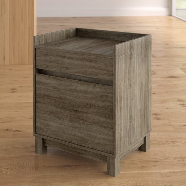 Hoggard 2-Drawer Filing Cabinet by Zipcode Design