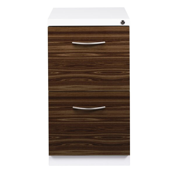 Ziegler Deep Pedestal 2-Drawer Mobile Vertical Filing Cabinet by Symple Stuff