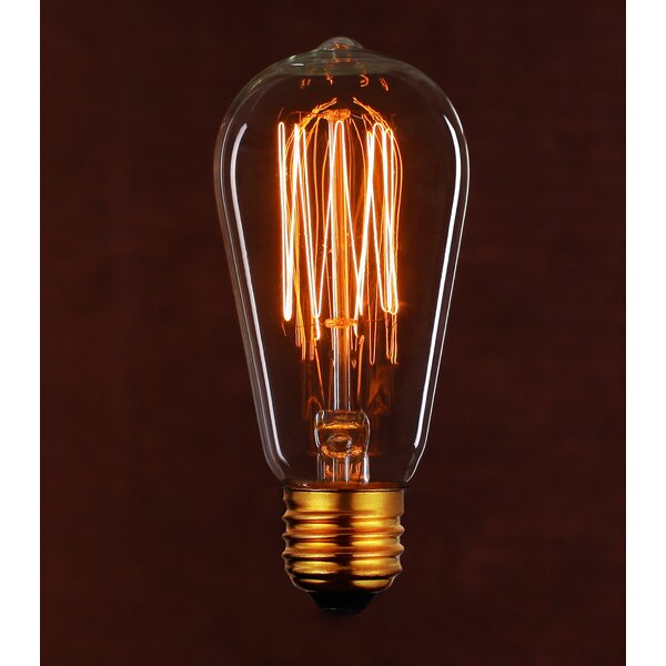 Vintage 40W Clear Light Bulb by String Light Company