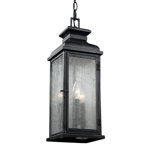 Hazelwood 2-Light Outdoor Hanging Lantern by Darby Home Co