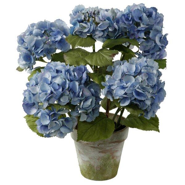4-Stem Hydrangea Floral Arrangement in Terracotta Pot by Winward Silks