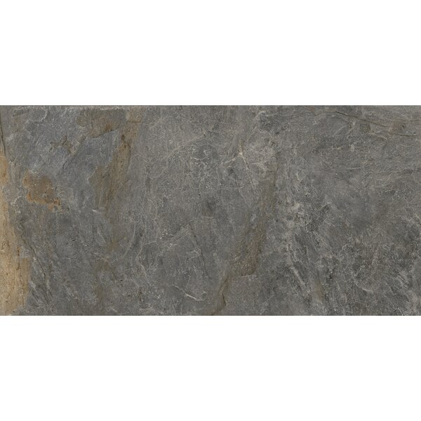 Milestone 24 x 47 Porcelain Field Tile in Gray by Emser Tile