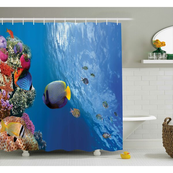 Bettye Tropical Emperor Long Living Angelfish Shower Curtain by Highland Dunes
