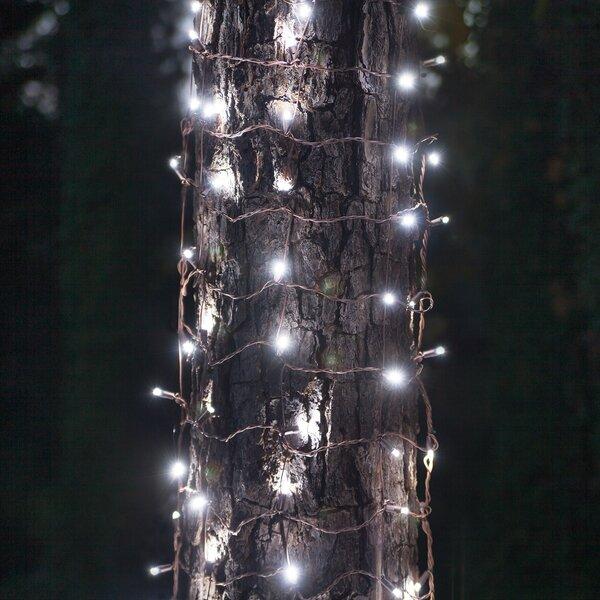 100 LED Christmas Trunk Wrap Light by Wintergreen Lighting