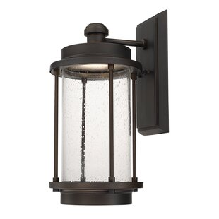 Best Review Sturtz 1-Light Outdoor Sconce By Brayden Studio
