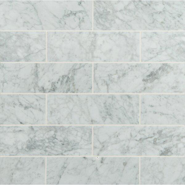 Msi 4 X 12 Honed Marble Tile In Arabescato Carrara Reviews Wayfair