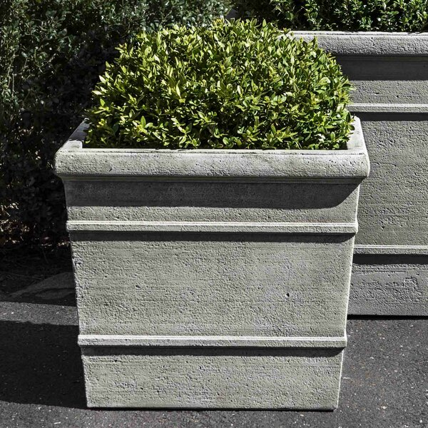 Kayleen Cast Stone Pot Planter by Darby Home Co
