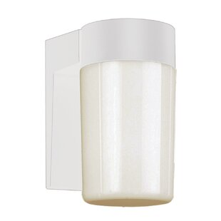 Online Reviews 1-Light Outdoor Wall Lantern By TransGlobe Lighting