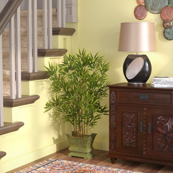 Bamboo Tree with Decorative Planter by Beachcrest Home